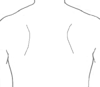 torso with stethoscope chestpiece